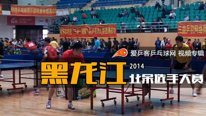 2014年黑龙江业余选手大赛