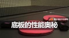 连球拍的秘密你都不知道就别打乒乓球了!